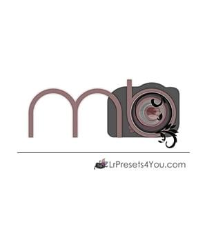 Logo Beispiel 8
